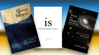 2017 Jewish poetry titles from Ben Yehuda Press